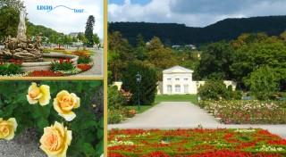 Zľava 19%: Využite skvelé ceny ubytovania v Resorte Beatrice v Tatranskej Lomici s minigolfom, saunou a poukážkou do wellness. Tú najkrajšiu jeseň si vychutnáte v Tatrách.